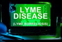 choroba z lyme