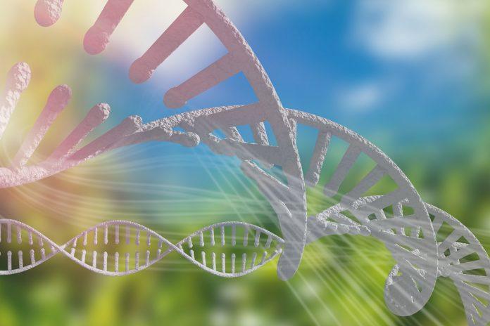 CBS problemy z genami w boreliozie