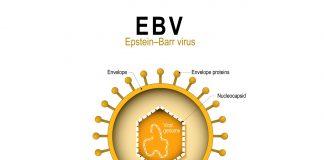 wirus_EBV_choroba_z_lyme_borelioza_i_koinfekcje