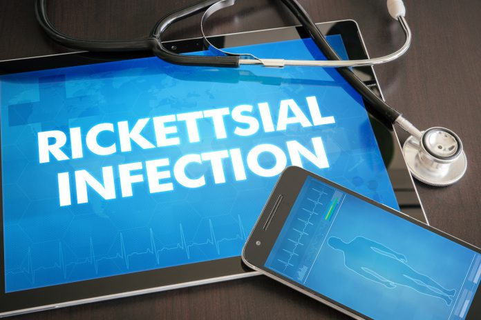 Rickettsia borelioza koinfekcje objawy leczenie_problemy diagnostyczne